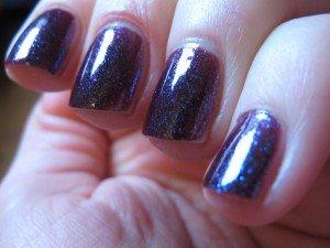 IMG_1868-300x225 dans purple