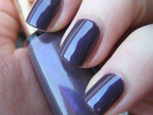 IMG_2133-300x225 dans purple