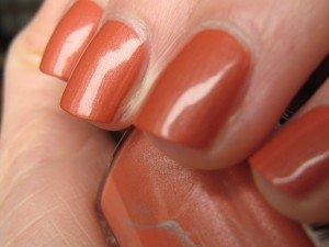 IMG_2176-300x225 dans orange