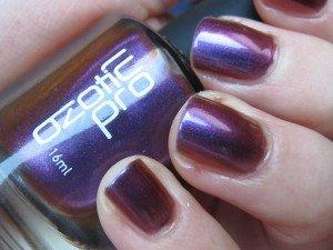 IMG_3655-300x225 dans purple